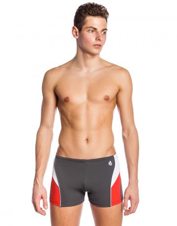 Мужские плавки-шорты SPIRITПлавки-шорты<br>Плавки-шорты со средним уровнем талии. Внутри пояса шнурок. Высота бокового шва 25 см. Серия ткани Training. Для регулярных тренировок.<br><br>Размер INT: XS<br>Цвет: Серый