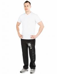 Мужские спортивные брюки FROZEN SURFERS